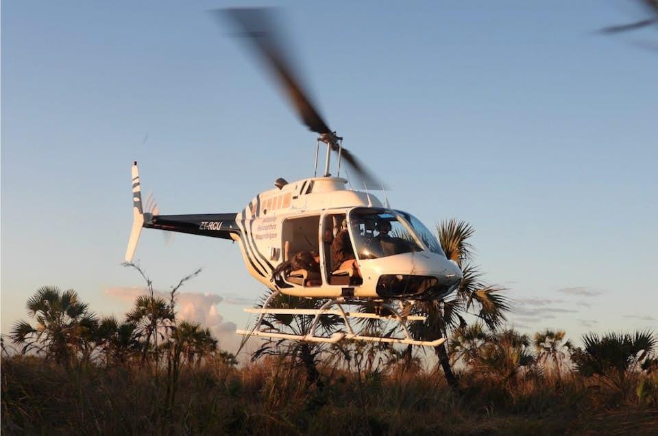Helicopter flies through a safari bush
