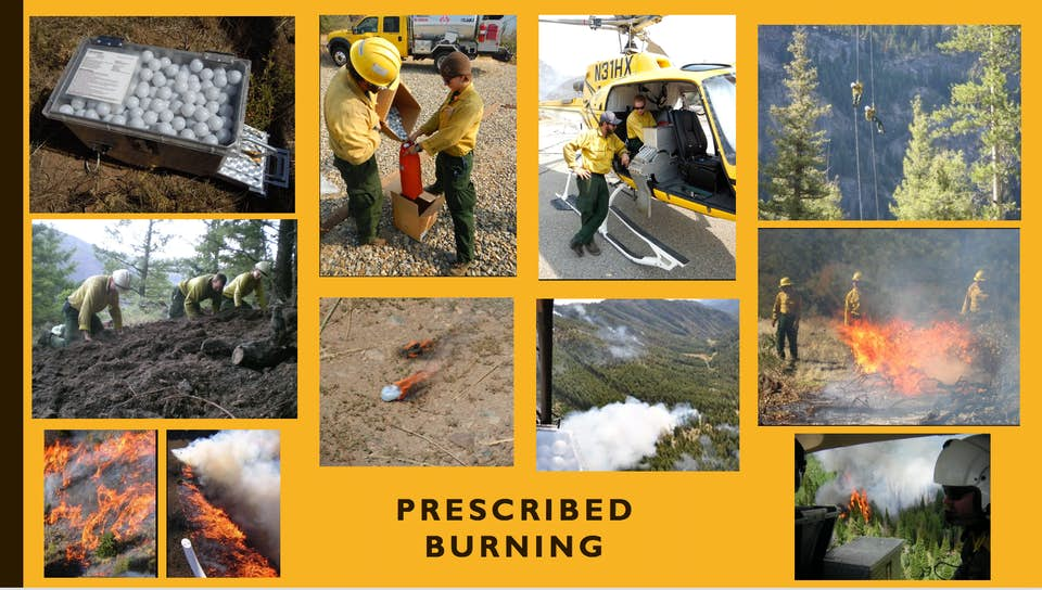 Prescribed Burns.